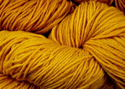 Dyeing with Persian Berry or Buckthorn natural dye | Wild Colours natural dyes