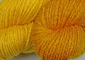 fustic  natural dye extract | Wild Colours natural dyes