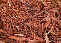 Saunderswood wood chips | Wild Colours natural dyes