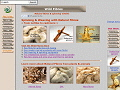 Wild Fibres for weaving, spinning & dyeing